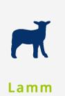 hundefutter-halle-sorten-lamm
