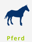hundefutter-halle-sorten-pferd